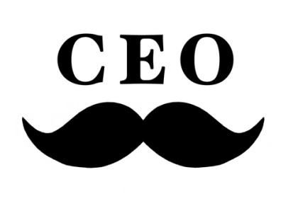 CEO's Guide to Making Money out of Training